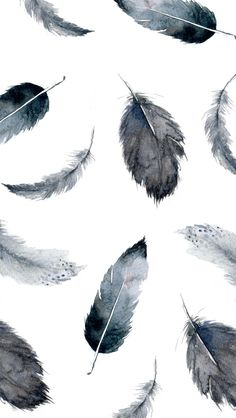 Feather Tumblr Wallpapers For Iphone ~ Jllsly