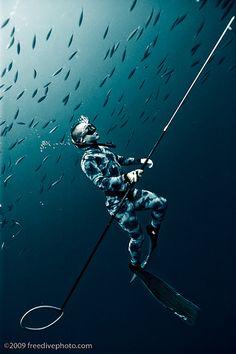 Spearfishing at Yokohama // by Kurt Chambers
