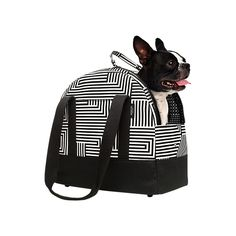 Pet Carrier in Signature Zig Zag - Kate Spade Saturday