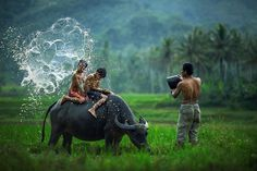 Những Hình Ảnh Đẹp Thiên Nhiên Của Quê Hương Việt Nam