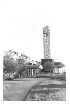 [OThistory] Nel 1946 apre a Las Vegas il primo Casinò Hotel. Costruito per volere del gangster ebreo Bugsy Siegel e finanziato con il denaro delle famiglie mafiose della East Coast, il Flamingo venne inaugurato il 26 dicembre ed è stato il terzo resort ad aprire sullo Strip e il più vecchio tra quelli ancora esistenti. Flamingo Casino Las Vegas, Flamingo Hotel, Las Vegas City, Vegas Casino, Las Vegas Strip, Las Vegas Nevada, Casino Movie, Old Vegas, Vegas 2