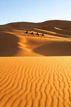 cool The Golden Sahara Desert
