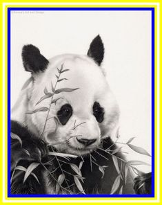 Bamboo Drawing panda-#Bamboo #Drawing #panda Please Click Link To Find More Reference,,, ENJOY!!