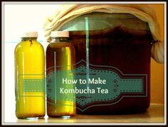 How To Make Kombucha Tea--The ultimate guide to getting started and maintaining kombucha.