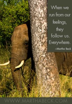 When we run from our feelings, they follow us. Everywhere. ~Martha Beck