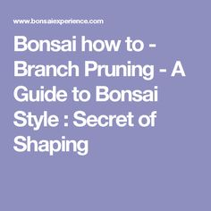 Bonsai how to - Branch Pruning - A Guide to Bonsai Style : Secret of Shaping
