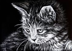 MOTHERS DAY SALE - Cat ACEO ORIGINAL Scratchboard Scratch Art KITTEN Baby Animal #Miniature