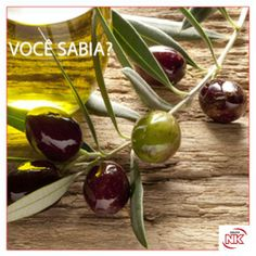 A azeitona também é um fruto. O curioso é que a oliveira (árvore da qual é colhida a azeitona) pode viver até mil anos ou mais.