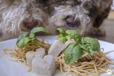 Dog photography, nature photography, books and Truffle Pasta, Dog Ice Cream, Lagotto Romagnolo, Dog Cookies, Food Test, Homemade Ice Cream, Dog Photography, Ice Cream Recipes, Truffles