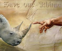 for the rhinos!
