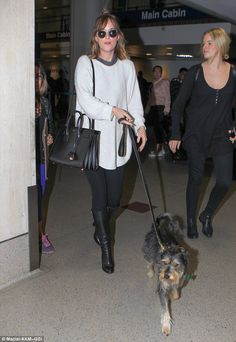 Her travel buddy! Dakota Johnson dotes on beloved pet pooch Zeppelin as she makes her way through LAX airport
