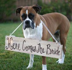 """【楽天市場】【アンティーク""""Here Comes The Bride""""手描き看板】愛犬と一緒の結婚式、写真撮影用に♪:ベビー&ウェディング ミシア"""