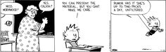 Calvin and Hobbes - You can present the material, but you can't make me care.