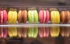 Magnolia boutique sweet shop by DimitraLefterova