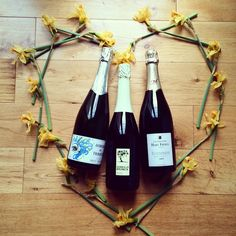 Whatever your Valentine's Day theme this year.. We have bubbles to go with it. Italian Prosecco, Spanish Cava or French Champagne all from your favourite local wine shop #forestwines #valentines