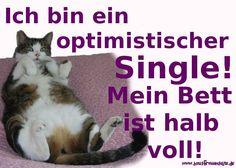 Ich bin ein optimischtischer Single! Mein Bett ist halb voll!