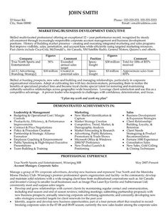 click here to download this business development executive resume template httpwww - Business Resume Templates