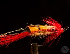 Ally's Shrimp Red: En killer-flue på atlanterhavslaks og sjøørret. Les mer her: http://fluefiskefluer.no/#!/~/product/category=2249149=12516120