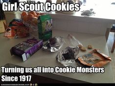 20 Seriously Funny G 20 Seriously Funny Girl Scout Cookie Memes Girl Scout Cookie Meme, Girl Scout Cookie Sales, Girl Scout Cookies, Girl Scout Leader, Girl Scout Troop, Gs Cookies, Girl Scout Juniors, Daisy Girl Scouts, Cookie Time