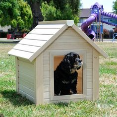 Top Not In The Dog House Discount Codes & Coupons