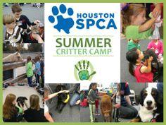 Summer Critter Camp Registration NOW OPEN!!