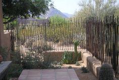 Awesome curvy rebar fence!