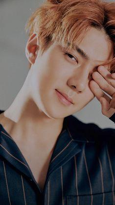 Sehun is the Thype - 155 Exo Chanyeol, Exo Ot12, Kpop Exo, Kyungsoo, Exo Chen, Kaisoo, K Pop, Sehun Cute, Kim Minseok