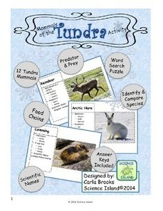 Mammals of the Tundra FREE Activity - 12 Fact Cards, a Word Search Puzzle, and a classification chart - and it's FREE!