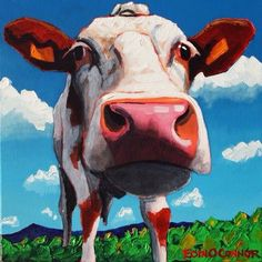 Irish, Cow, Drawings, Animals, Animales, Irish Language, Animaux, Sketches, Animal Memes