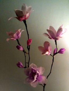 Amble Through Bramble — Magnolias