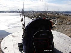 Videkvistar - Pimpinella.org North Face Backpack, The North Face, Backpacks, Bags, Fashion, History, Handbags, Moda, The Nord Face