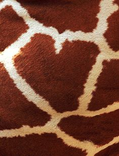 Giraffe Fur.  I Heart You by Erin Gardner