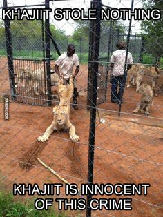 """""""Khajiit stole nothing! Khajiit is innocent of this crime!"""" Posted on fun.sexmakefun.com."""