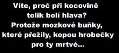 (98) Doručené – Seznam Email Funny Memes, Jokes, Story Quotes, True Stories, Quotations, Haha, Funny Pictures, Quotation, Proverbs Quotes