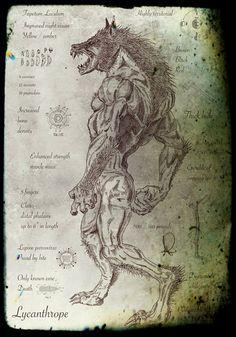 Conspiracy Feeds: Λυκάωνες - Οι 12 Φυλές Και Οι Νόμοι Τους! (ΜΕΡΟΣ ΠΡΩΤΟ)