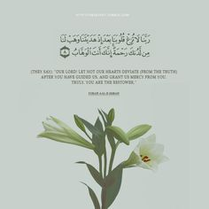 "(They say): ""Our Lord! Let not our hearts deviate (from the truth) after You have guided us, and grant us mercy from You. Truly, You are the Bestower. (Quran 3:8)"