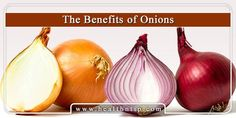The advantages of onions can't be counted on finger tips because they're numerous in numbers. Learn here Onions Health Benefits and Nutritional Information.
