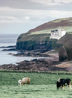 Scotland Castles, Scottish Castles, Edinburgh Scotland, European Vacation, European Travel, Travel Europe, Beautiful Castles, Beautiful Places, Outfits Spring