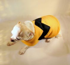 I want a Charlie Brown sweater for Noah...is that so wrong?  Maybe a fleece pullover will have to suffice, even though he is a boy and not a dog. :)