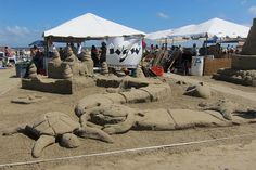 Sandcastle Contest Galveston Texas