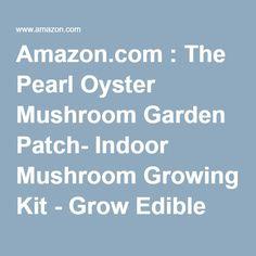 Amazon.com : The Pearl Oyster Mushroom Garden Patch- Indoor Mushroom Growing Kit - Grow Edible Mushrooms & Fungi. Easy & Fun Mush Room Grow Kits : Vegetable Plants : Patio, Lawn & Garden