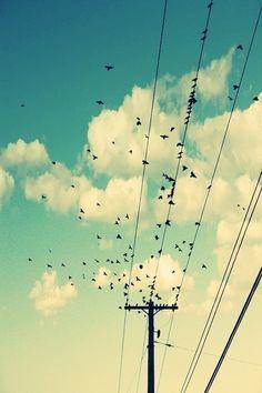 """""""Pies, para qué los quiero, si tengo alas para volar"""""""