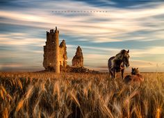 sunset over the ruin of the castle of Caudilla,Toledo, Spain.   thanks for visits and coments.