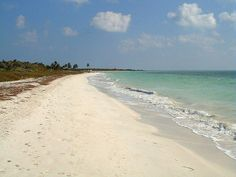 http://jvhirniak.hubpages.com/hub/Florida-Ten-Great-State-Parks-in-the-Sunshine-State