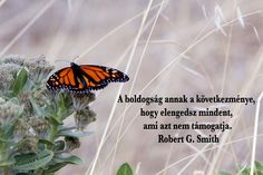 Robert G, Choose Me, Letting Go, Motivational Quotes, Life Quotes, Mindfulness, Thoughts, Let It Be, Sayings