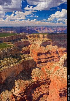 Grand Canyon National Park, Arizona  Another place I would like to visit again! Grand Canyon National Park, National Parks, Places To Travel, Places To See, Gypsy Soul, Adventure Awaits, Stock Pictures, Dream Vacations, Where To Go