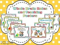 Whole Brain Teaching Rules and Procedures - Boho Bird Inspired