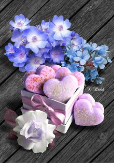 ❥●❥ ♥ ♥ ❥●❥ Good Morning Gift, Cute Good Morning Images, Good Morning Greetings, Pink Wallpaper Iphone, Love Wallpaper, Pretty In Pink, Beautiful Flowers, Beautiful Things, Birthday Greetings