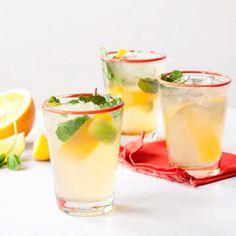 Citrus Gin Spritzer