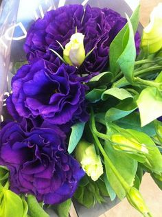 Deep Purple Lisianthis - this is one of our main wedding flowers!